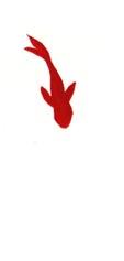 金魚 1.jpg